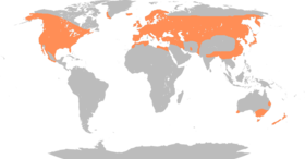 Anas platyrhynchos distribution map.png