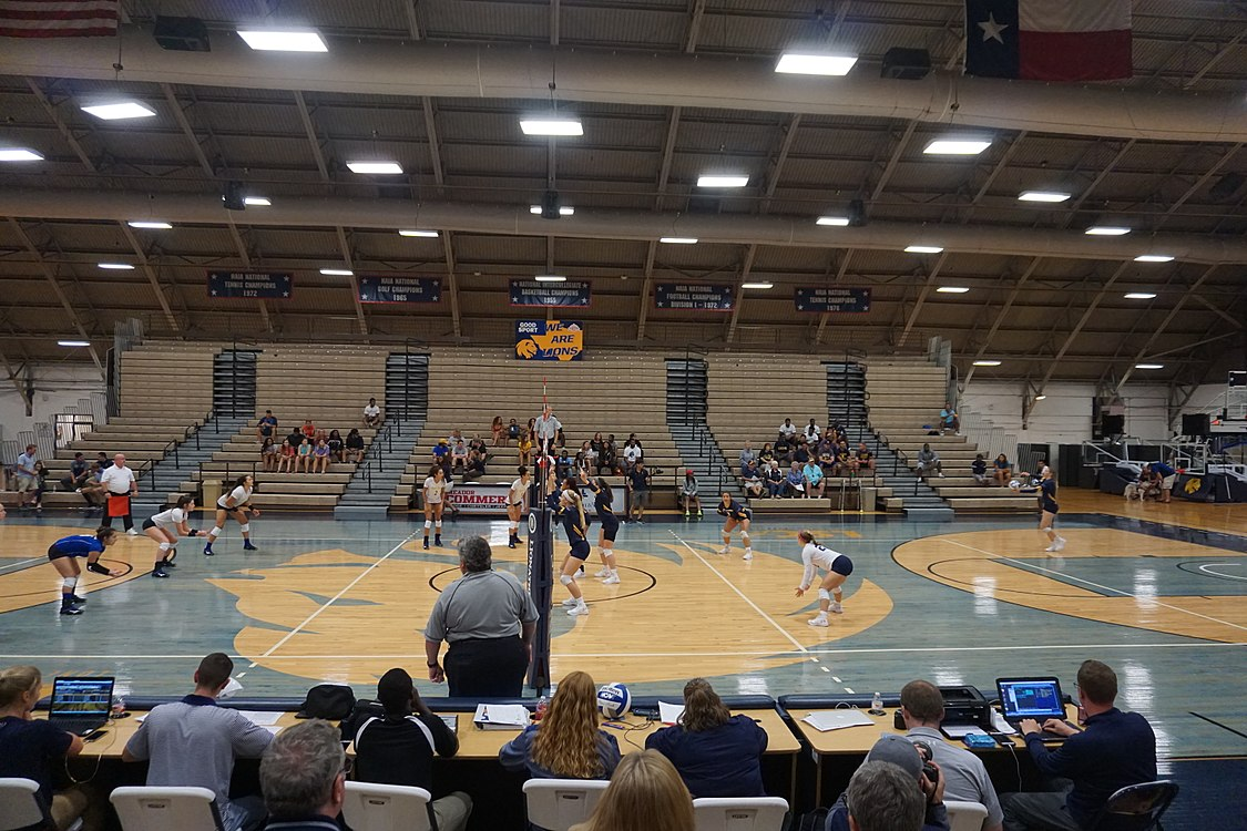 Angelo State vs. Texas A&M–Commerce volleyball 2017 04.jpg