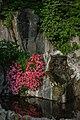 Angoli piacevoli lungo il Sentiero San Michele.jpg