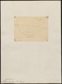 Anthus cervinus - 1700-1880 - Print - Iconographia Zoologica - Special Collections University of Amsterdam - UBA01 IZ16300159.tif