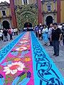 Arco y alfombra de fiesta patronal 2017 en Catedral de Orizaba, Veracruz.jpg