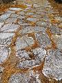 Area Archeologica di Cales 10.JPG
