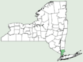 Aristida adscensionis NY-dist-map.png