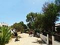 Armona Island (Portugal) - 49707135963.jpg