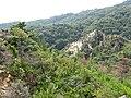 Ashiya Rock Garden12.jpg
