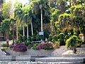 Aswan Botanical Garden 13.jpg