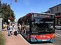 Autobus 8 ZKM Sochaczew.jpg