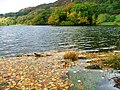 Autumn on Rydal Water - geograph.org.uk - 266937.jpg