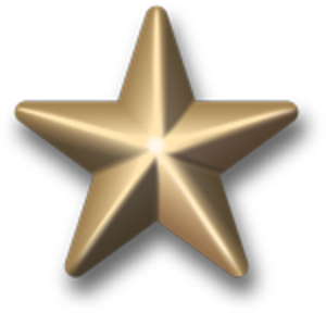 5/16 inch star - Image: Award star gold 3d