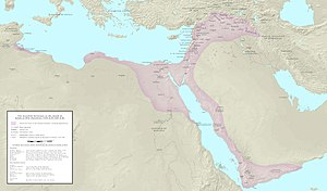 Ayyubid dynasty - Ayyubid Sultanate (in pink) after Saladin's death in 1193