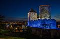 Będzin zamek-2191.jpg
