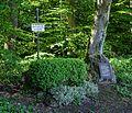 Bad Schussenried-5820.jpg