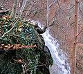 Bad Urach Wasserfall - panoramio (5).jpg