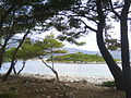 Badija-pogled na Rogačić02547.JPG