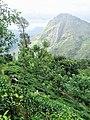 Badulla, Sri Lanka - panoramio (14).jpg
