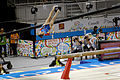 Balance 7 2015 Pan Am Games.jpg
