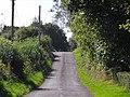 Ballylintagh Road, Hillsborough - geograph.org.uk - 1484564.jpg