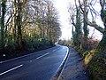 Ballyward Road - geograph.org.uk - 345320.jpg