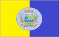 Bandeira de Fazenda Nova.png