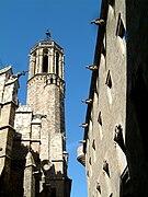 Barcelona, Cathedral and Palau del Lloctinent.jpg