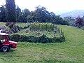 Barga, Province of Lucca, Italy - panoramio - jim walton (44).jpg