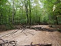 Barrier in the Hambach forest 12.jpg