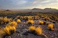 Basin and Range National Monument (21422595700).jpg