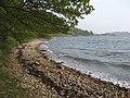 Beach between Burntisland and Aberdour - geograph.org.uk - 1457411.jpg