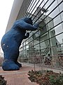 Bear at the Denver Convention Center (5185987963).jpg