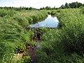Beaver hut - panoramio.jpg