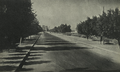 Beirut Entrance road from Nahr - 1947.png