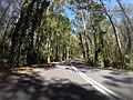 Benandarah NSW 2536, Australia - panoramio (11).jpg