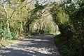 Bend in Martineau Lane - geograph.org.uk - 1855632.jpg