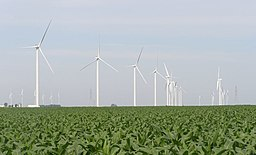 Benton County Wind Farm 0011.jpg