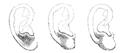 Bertillon - Identification anthropométrique (1893) 062.2 n&b.png