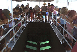 Biscayne National Park H-glass bottom boat tour.jpg