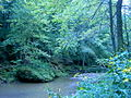 Bixby-State-Preserve Clayton-County,-Iowa Sunday,-September-4,-2011 e.jpg
