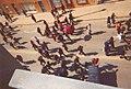 Black Bloc Sommet des Ameriques Summit of the Americas Quebec 2001.jpg