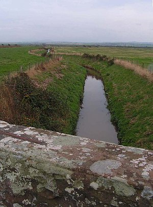 Black Dub (stream) - Black Dub,nr Oldkiln - geograph.org.uk - 63943