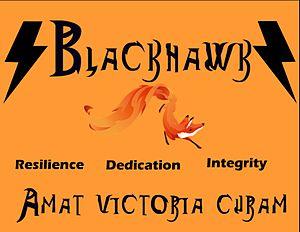 British International School of Chicago Lincoln Park - Blackhawk house