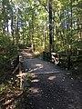 Blendon Woods Metro Park October 2018 11.jpg