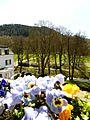 Blick zum Leisberg - panoramio.jpg