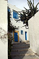 Bluebalconies4 - Sidi Bou Said.jpg