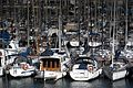 Boats anchored in Barcelona harbour.jpg