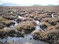 Bog behind Meall Liath-chloich - geograph.org.uk - 1553196.jpg