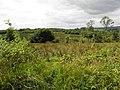 Bonebrook Townland (geograph 3610965).jpg