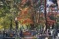 Borek Falecki parish cemetery, Zawila street, Krakow, Poland.jpg