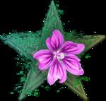 Botany Barnstar 3.png