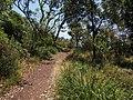 Botany Bay National Park - panoramio (25).jpg