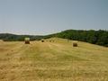 Bottes de foin - juin 2014 - Castelculier.png